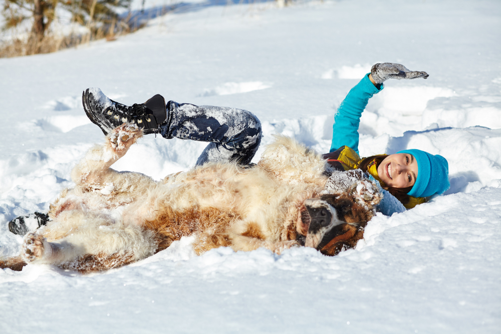 Woman and dog lying in the snow